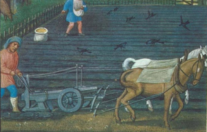 Development of the heavy plough was inevitable with few and expensive labour